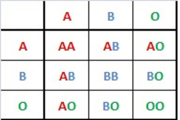 matrix of different blood types A, B, O, AB