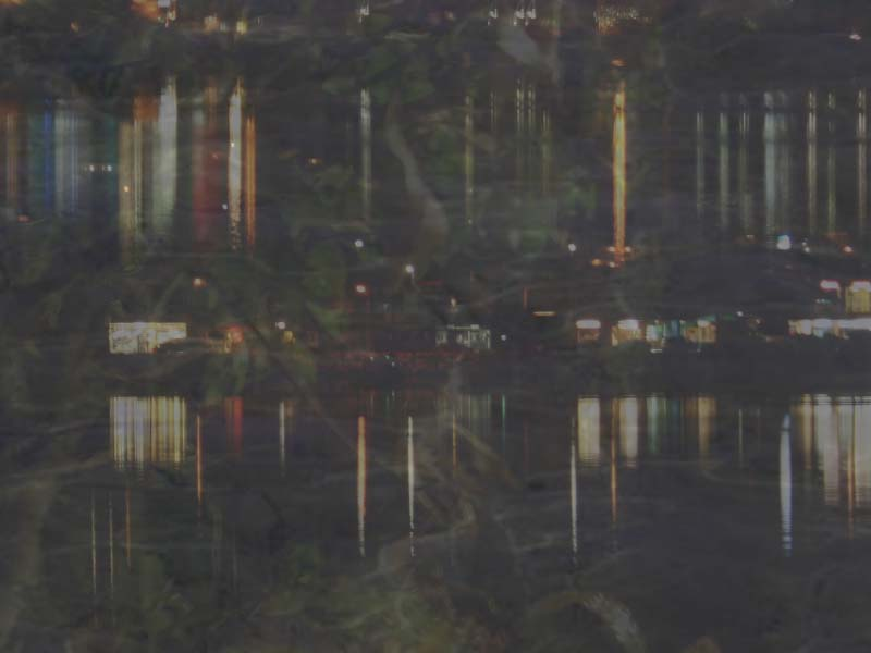 artwork showing the night lake with lights and superimposed plants