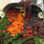 peer review study of pH diet (alkaline diet)