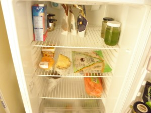 contents of sarah's fridge