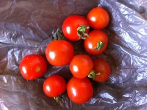 handful of cheery tomatoes
