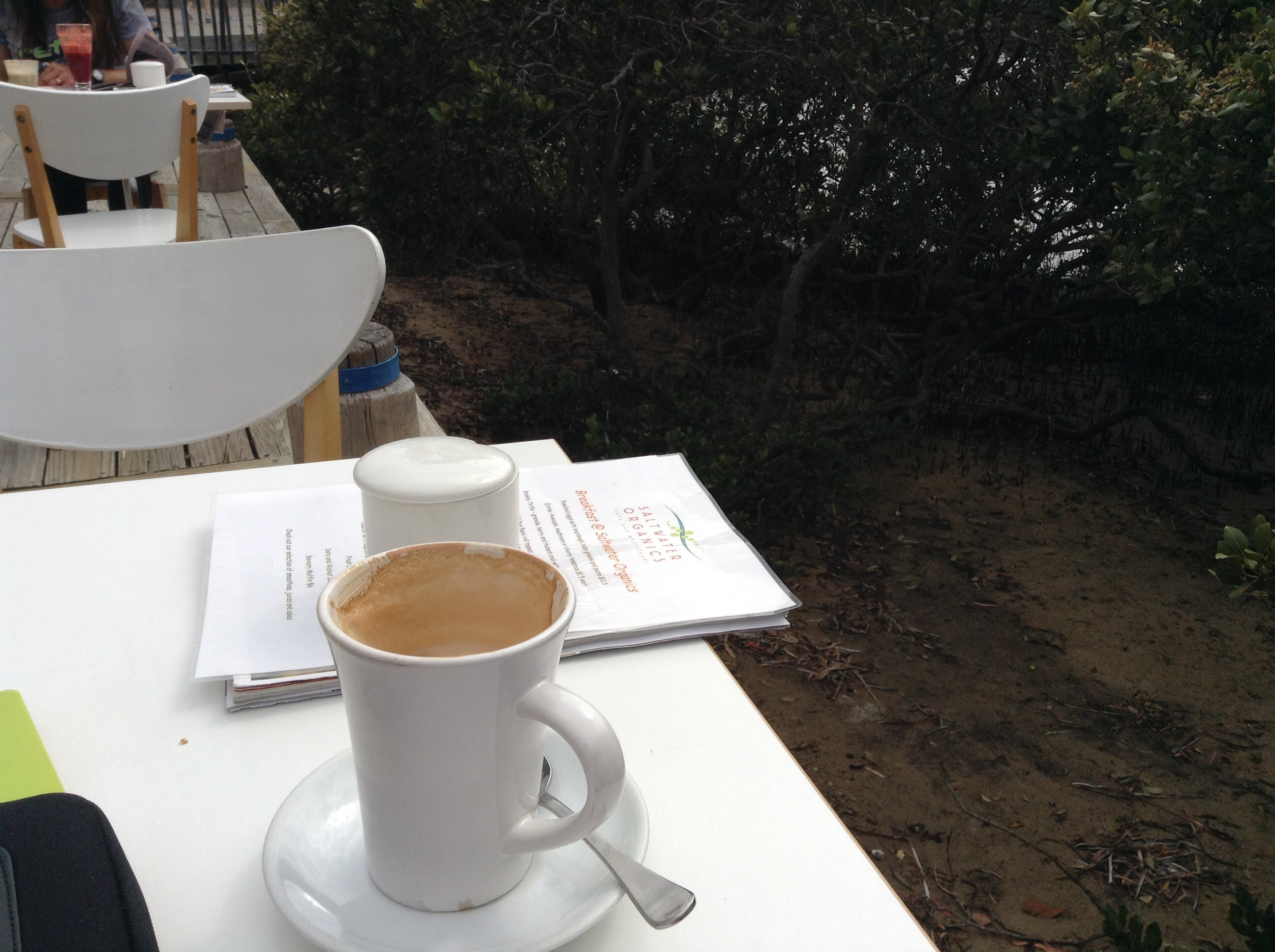 coffee cup at the mangroves, nicotine withdrawal