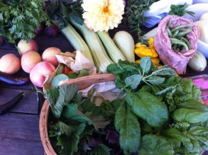 basket of basil, some zucchini, peaches and other foods