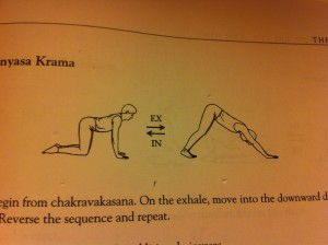 diagram posture Adhomukha Shvanasana - Downward Dog
