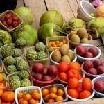 vegan plant based protein