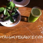 green smoothie detox