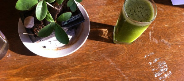 bonsai and green smoothie in the sun