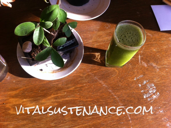 bonsai and green smoothie in the sun New Year's resolutions