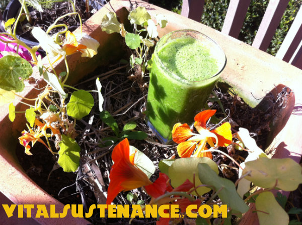 green smoothie challenge day 3 july 2014