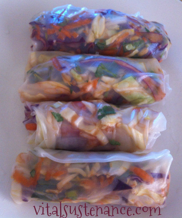 rolled up asian spring rolls