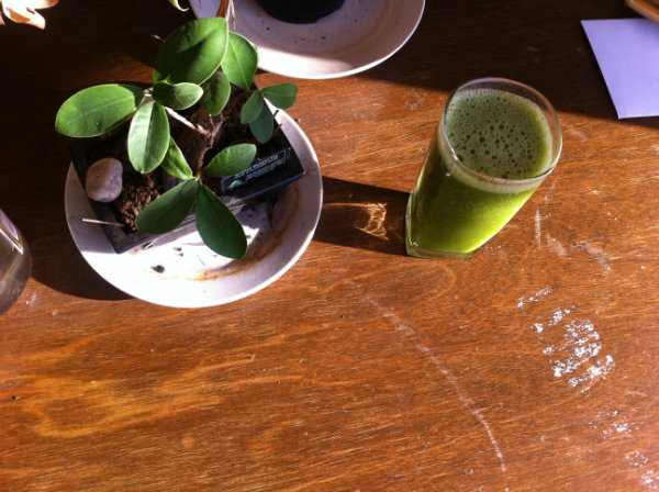 green smoothie with bonsai