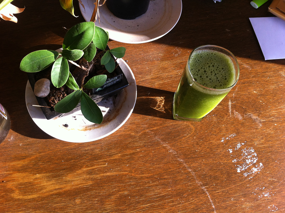 glass juice with bonsai
