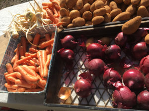 seasonal winter vegetables at the farmers market sunday melbourne