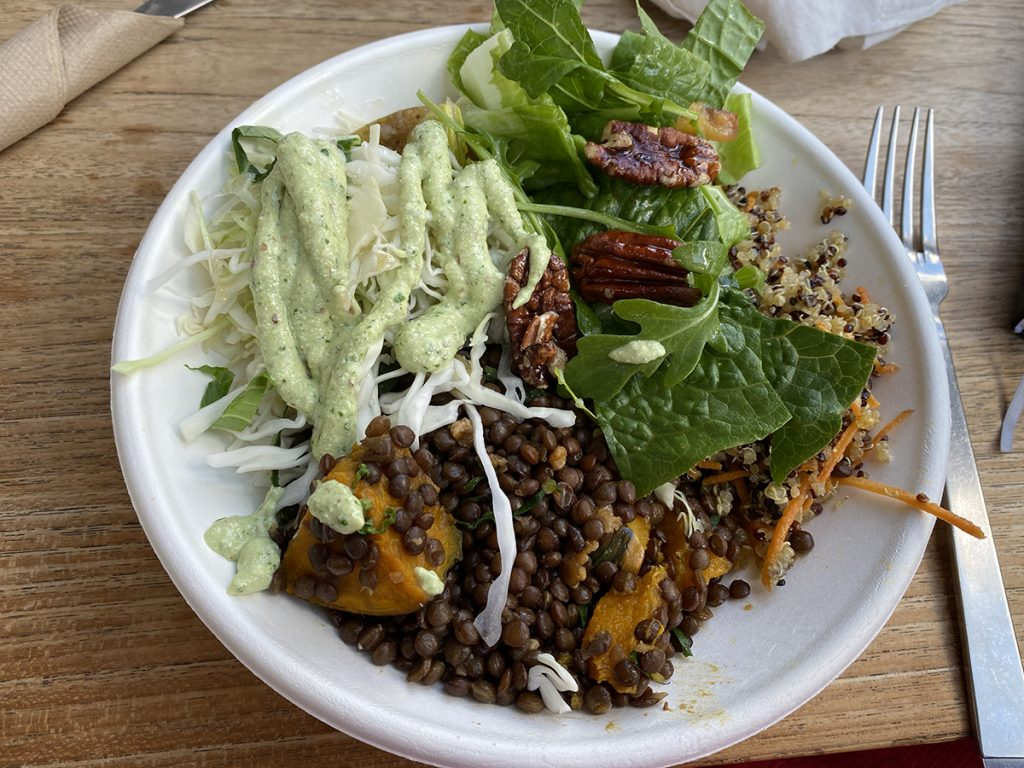 how much calcium in vegan diet - dairy free calcium rich foods- friends of the earth lunch plate with lentils, pecans and salad