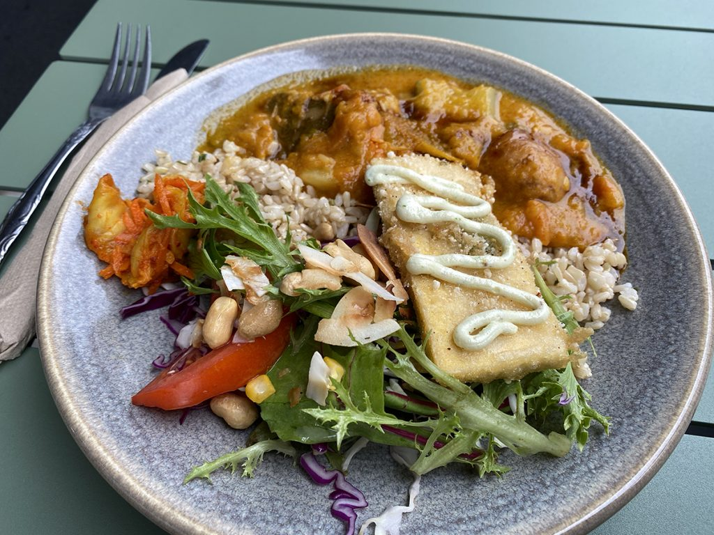 how to transition into a vegan diet - friends of the earth lunch plate